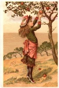 Vintage-Apple-Picking-Image-GraphicsFairy